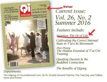 Qi Journal Summer 2016