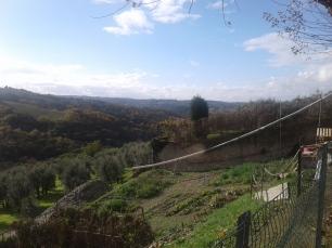 view from Relais Villa Olma_Tuscany.jpg