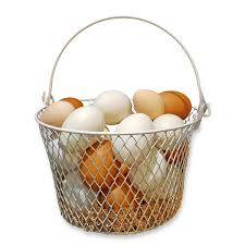 eggs in basket2